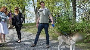 oskarsjostedthund